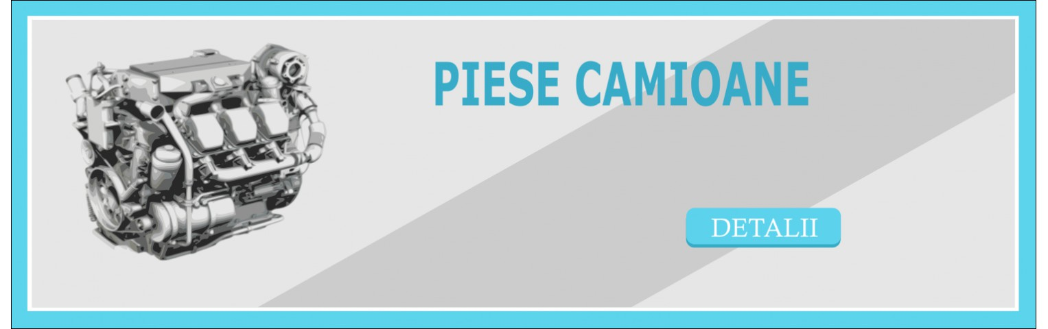 Piese Camioane